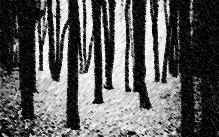 forestcharcoal.jpg